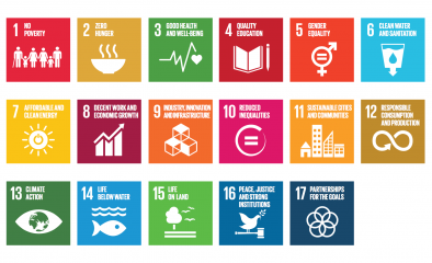 How Coolfinity contributes to the SDGs